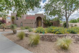 5732 Teakwood Trail NE, Albuquerque, NM 87111 (MLS #893008) :: Campbell & Campbell Real Estate Services