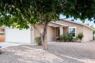 8505 Mesa Camino Avenue SW, Albuquerque, NM 87121 (MLS #893010) :: Campbell & Campbell Real Estate Services