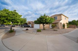 5901 Night Shadow Avenue NW, Albuquerque, NM 87114 (MLS #893011) :: Campbell & Campbell Real Estate Services