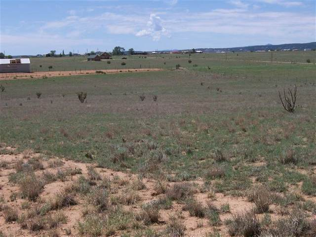 7 Caprine Drive, Edgewood, NM 87015 (MLS #1000047) :: Campbell & Campbell Real Estate Services