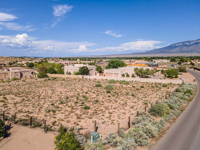 112 Todos Juntos Road, Corrales, NM 87048 (MLS #1000067) :: Keller Williams Realty