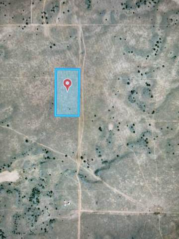 Tierra Verde Lands, Grants, NM 87020 (MLS #1000095) :: Campbell & Campbell Real Estate Services