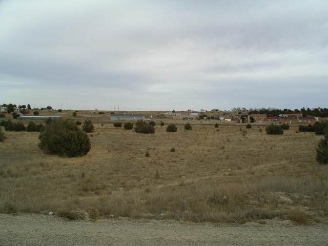 Paradise Road SE, Edgewood, NM 87015 (MLS #1000132) :: Campbell & Campbell Real Estate Services