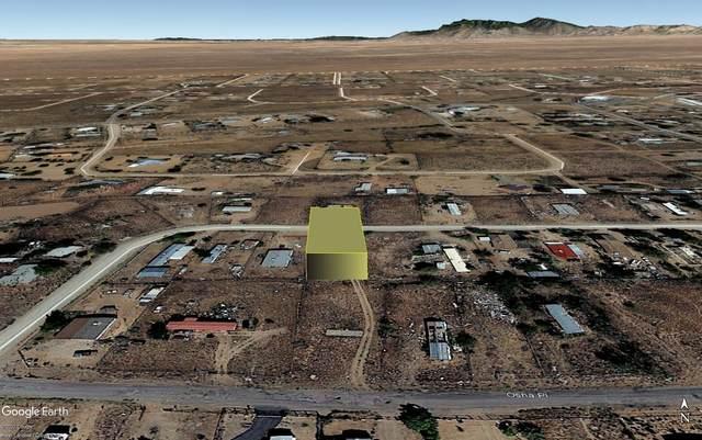 26 Bonita Loop, Los Lunas, NM 87031 (MLS #1000138) :: Campbell & Campbell Real Estate Services