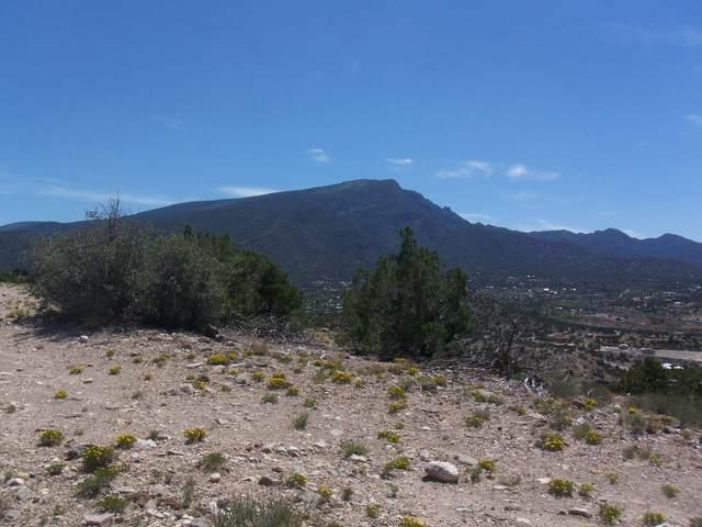 49 Camino De Las Brisas, Placitas, NM 87043 (MLS #1000182) :: Campbell & Campbell Real Estate Services