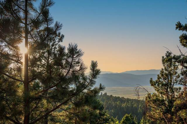 181 Back Basin Road, Angel Fire, NM 87710 (MLS #1000196) :: Campbell & Campbell Real Estate Services