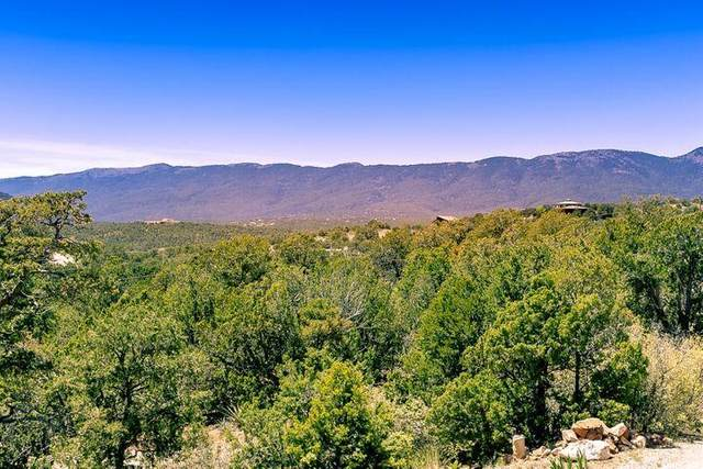 14 Eagle Run Court, Sandia Park, NM 87047 (MLS #1000207) :: Campbell & Campbell Real Estate Services