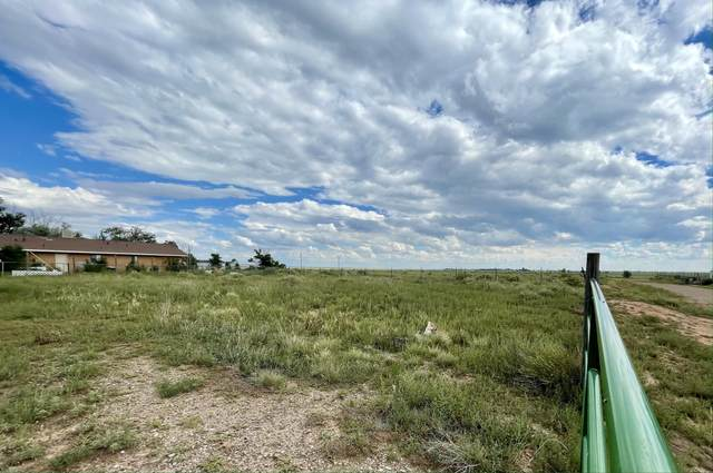 0 Maryann Street, Moriarty, NM 87035 (MLS #1000383) :: Campbell & Campbell Real Estate Services