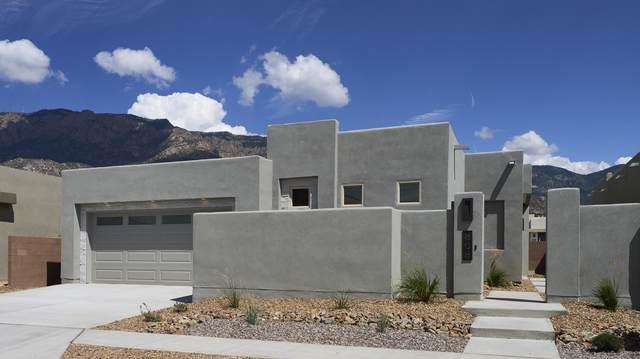 808 Horned Owl Drive NE, Albuquerque, NM 87122 (MLS #1000484) :: Keller Williams Realty