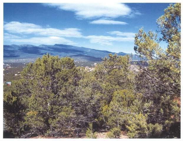 230 Kimberly Lane, Tijeras, NM 87059 (MLS #1000551) :: Campbell & Campbell Real Estate Services
