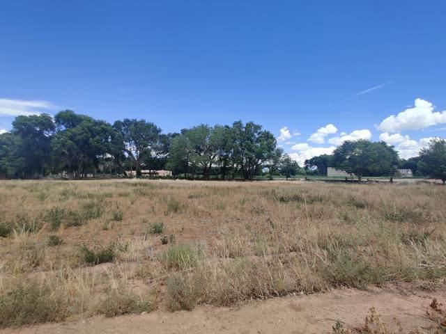 Malpais Road SW, Albuquerque, NM 87105 (MLS #1000675) :: Campbell & Campbell Real Estate Services