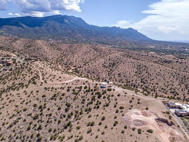 Overlook Drive, Placitas, NM 87043 (MLS #1000695) :: Campbell & Campbell Real Estate Services