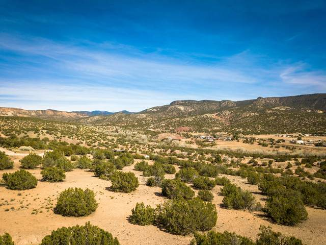 Skyline View Rd Lot D1b, Ponderosa, NM 87044 (MLS #1000707) :: Campbell & Campbell Real Estate Services