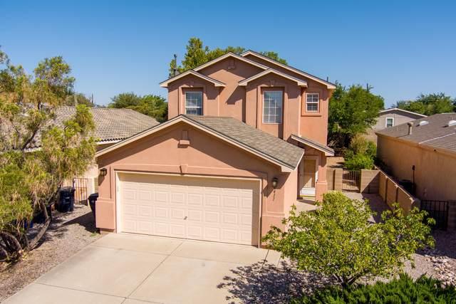 6411 Sonrisa Place NE, Albuquerque, NM 87113 (MLS #1000727) :: Campbell & Campbell Real Estate Services