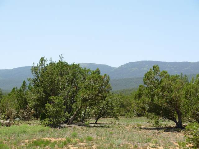 131 Paa Ko Drive, Sandia Park, NM 87047 (MLS #1000878) :: Campbell & Campbell Real Estate Services
