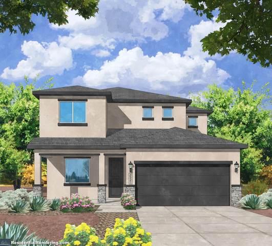 6728 Delgado Way NE, Rio Rancho, NM 87144 (MLS #1000910) :: Campbell & Campbell Real Estate Services