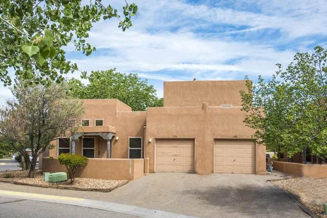 1709 Los Jardines Place NW, Albuquerque, NM 87104 (MLS #1000924) :: The Shear Team