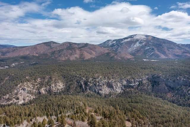 Vista Grande  Tract 1&2 Cielo, Jemez Springs, NM 87025 (MLS #1000998) :: Berkshire Hathaway HomeServices Santa Fe Real Estate