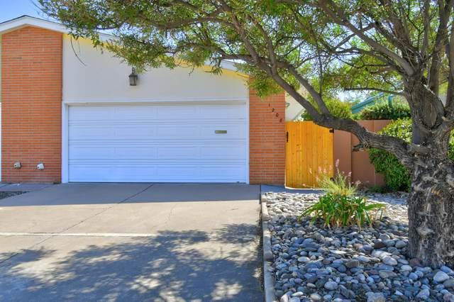 1208 Alvarado Drive NE, Albuquerque, NM 87110 (MLS #1001072) :: Keller Williams Realty