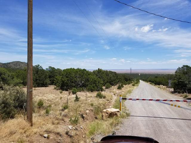 15 Camino San Pedros Road, Edgewood, NM 87015 (MLS #1001085) :: Campbell & Campbell Real Estate Services