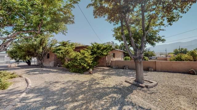 630 Camino Del Pueblo, Bernalillo, NM 87004 (MLS #1001102) :: Sandi Pressley Team