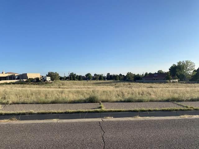 11316 Del Rey Avenue NE, Albuquerque, NM 87122 (MLS #1001103) :: HergGroup Albuquerque
