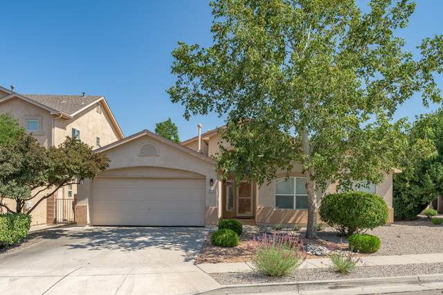 10176 Calle Chulita NW, Albuquerque, NM 87114 (MLS #1001104) :: Campbell & Campbell Real Estate Services