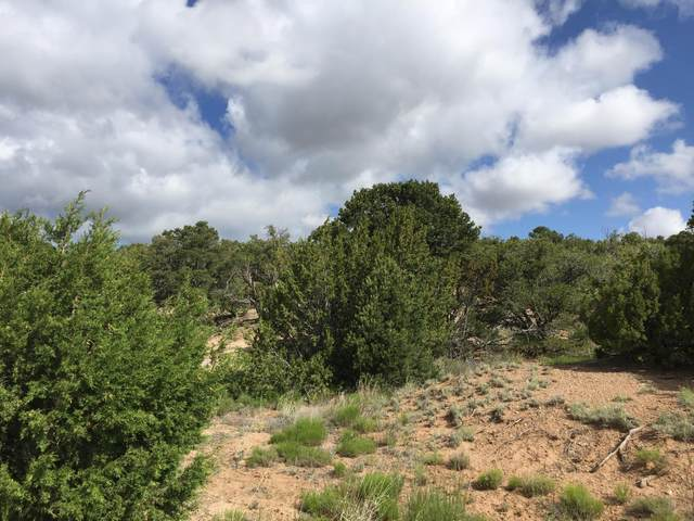 84 Rain Dance Road, Sandia Park, NM 87047 (MLS #1001151) :: Campbell & Campbell Real Estate Services