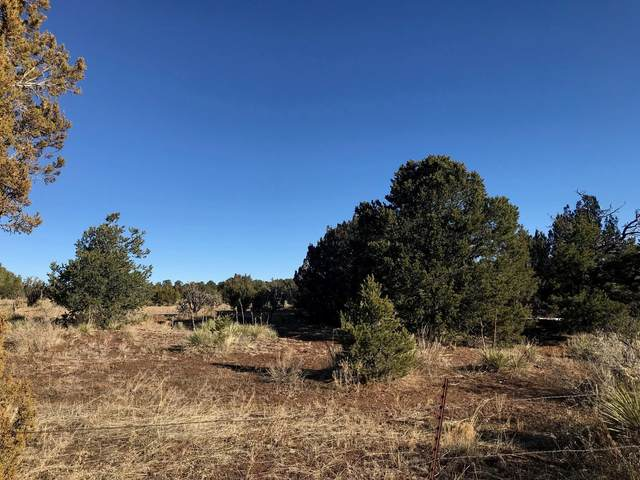 781 New Mexico 217, Tijeras, NM 87059 (MLS #1001163) :: Campbell & Campbell Real Estate Services