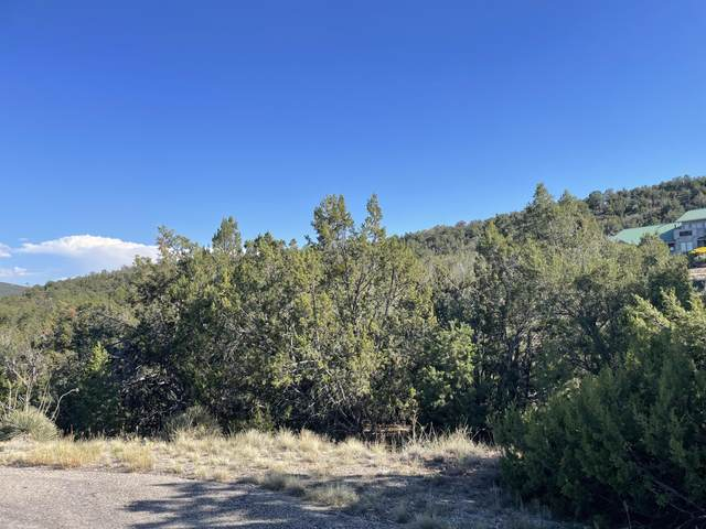 55 Canyon Ridge Drive, Sandia Park, NM 87047 (MLS #1001164) :: Campbell & Campbell Real Estate Services