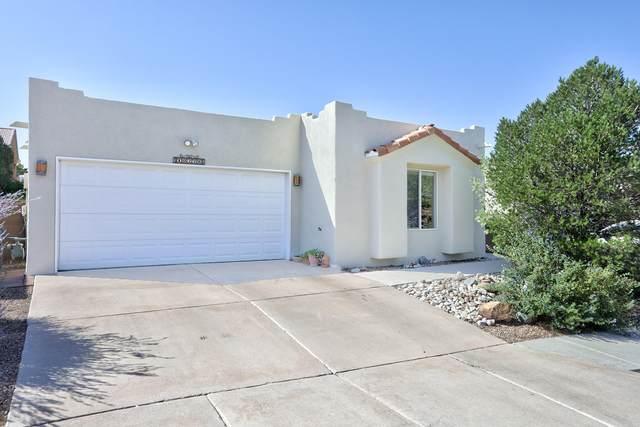 10228 Jarash Place NE, Albuquerque, NM 87122 (MLS #1001166) :: Keller Williams Realty