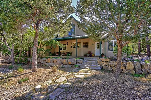 37 Peacock Lane, Tijeras, NM 87059 (MLS #1001175) :: Campbell & Campbell Real Estate Services