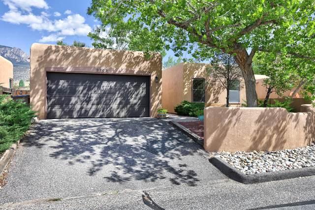 2702 Tramway Circle NE, Albuquerque, NM 87122 (MLS #1001183) :: The Buchman Group
