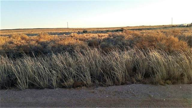 Palomino Drive Lot 6 Drive, Moriarty, NM 87035 (MLS #1001190) :: The Buchman Group