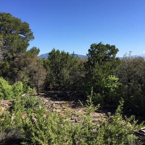 15 Las Nietas Court, Edgewood, NM 87015 (MLS #1001204) :: Campbell & Campbell Real Estate Services