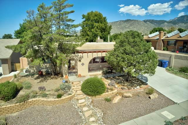 1069 Jewel Place NE, Albuquerque, NM 87123 (MLS #1001217) :: The Shear Team