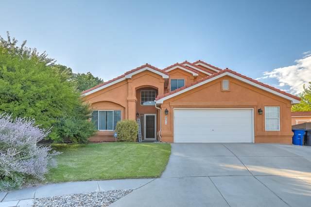 6215 Whisper Ridge Drive NW, Albuquerque, NM 87120 (MLS #1001218) :: The Shear Team