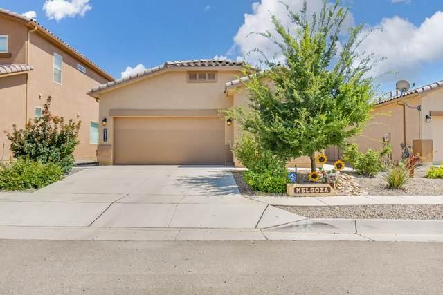 8824 Camp Verde Street NW, Albuquerque, NM 87114 (MLS #1001220) :: The Shear Team