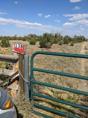 138 State Road 344, Edgewood, NM 87015 (MLS #1001245) :: Campbell & Campbell Real Estate Services