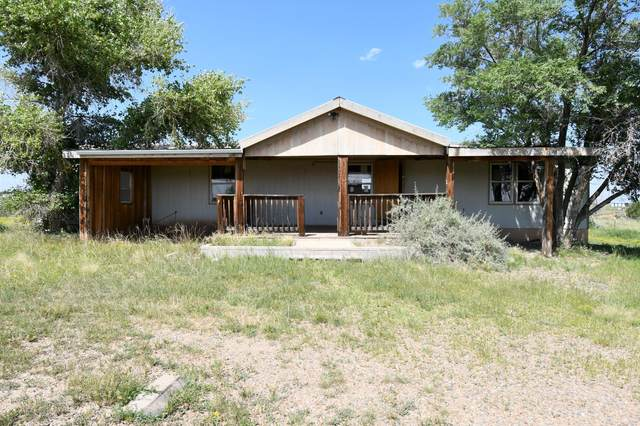 17 Pinto Drive, Edgewood, NM 87015 (MLS #1001275) :: Campbell & Campbell Real Estate Services