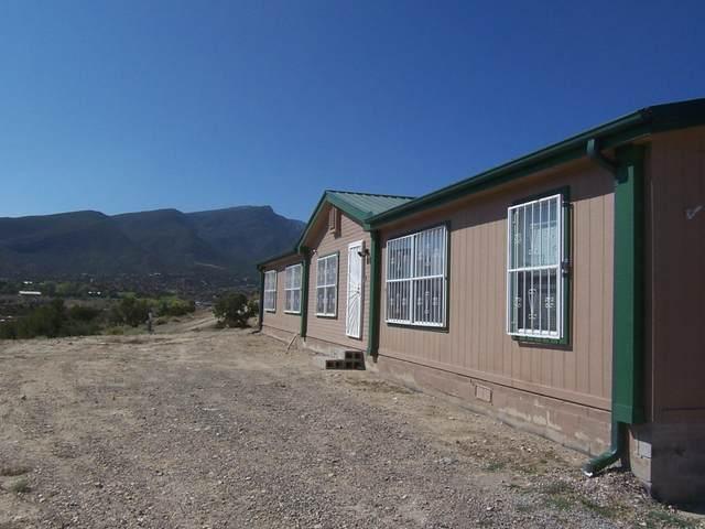 5 Camino De San Felipe, Placitas, NM 87043 (MLS #1001285) :: Campbell & Campbell Real Estate Services