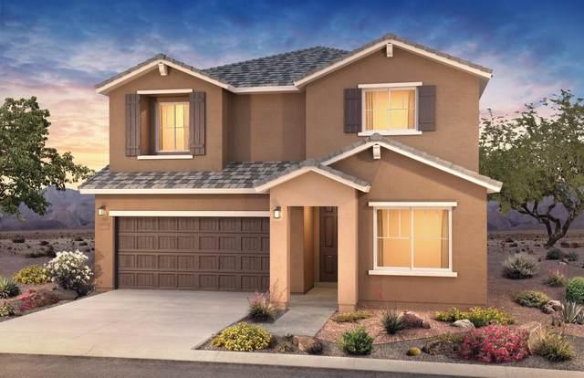 1164 Vallecito Loop NW, Los Lunas, NM 87031 (MLS #1001295) :: Campbell & Campbell Real Estate Services