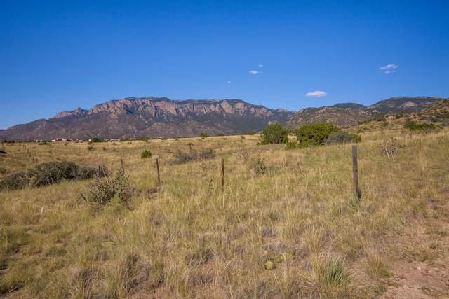 13608 Barranca Vista Court NE, Albuquerque, NM 87111 (MLS #1001305) :: Berkshire Hathaway HomeServices Santa Fe Real Estate