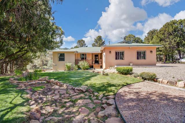 28 Magpie Road, Glorieta, NM 87535 (MLS #1001307) :: Campbell & Campbell Real Estate Services
