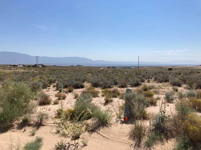 1409 Don Place SE, Rio Rancho, NM 87124 (MLS #1001352) :: Campbell & Campbell Real Estate Services
