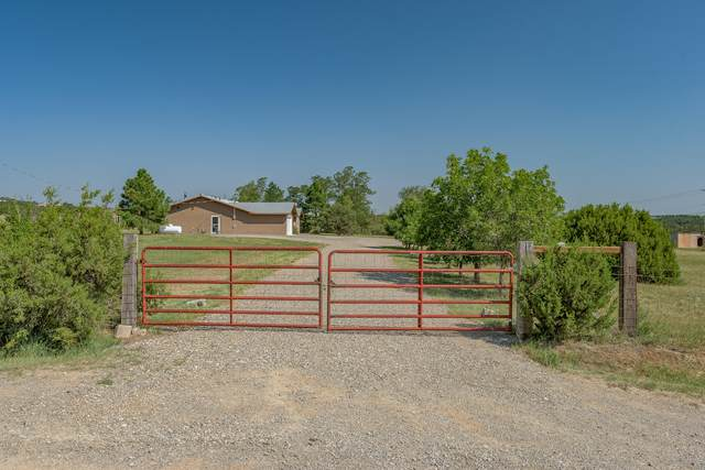 717 Nm 217, Tijeras, NM 87059 (MLS #1001360) :: Campbell & Campbell Real Estate Services
