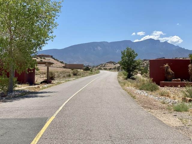 10 Basketweaver Court, Placitas, NM 87043 (MLS #1001411) :: Campbell & Campbell Real Estate Services
