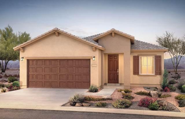 1168 Vallecito Loop NW, Los Lunas, NM 87031 (MLS #1001414) :: Campbell & Campbell Real Estate Services