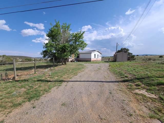 29 Homestead Road, Edgewood, NM 87015 (MLS #1001484) :: Berkshire Hathaway HomeServices Santa Fe Real Estate