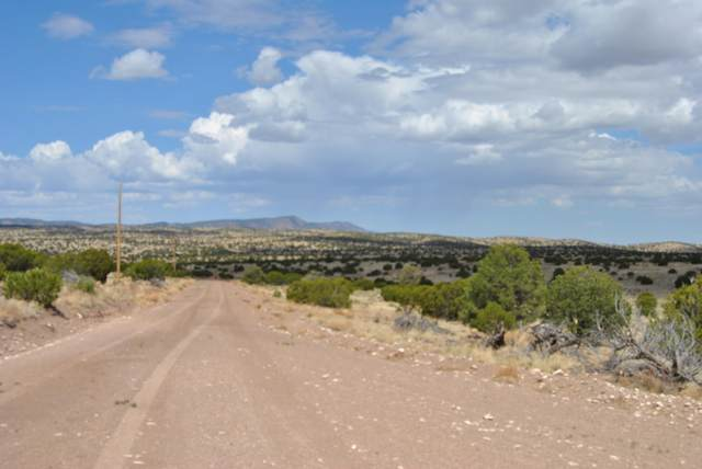 43 Lost Calf Lane, Magdalena, NM 87825 (MLS #1001524) :: Campbell & Campbell Real Estate Services
